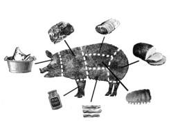 Illustration by Aaron Bagley